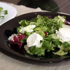 Зеленый салат с козьим сыром