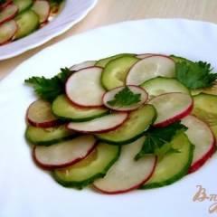 Салат из редиса и огурцов под пикантной заправкой