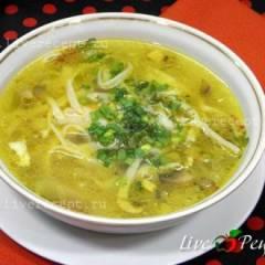 Куриный суп-лапша с грибами