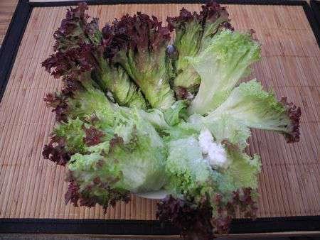 Завихрушки из салата с брынзой и крабами