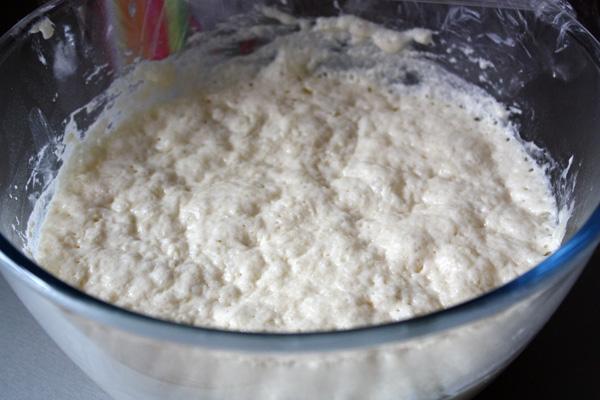 Получившееся мягкое тесто (опару) поставить в теплое место на час-полтора, пока оно не увеличится вдвое.