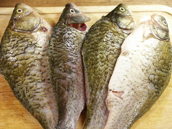 Рыбу надо почистить и выпотрошить, плавники и хвост лучше отрезать ножницами.